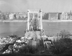 50 éves az Erzsébet híd